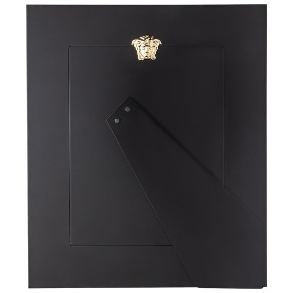 Picture Frame 20x25 Versace Frames VHF6 - Gold