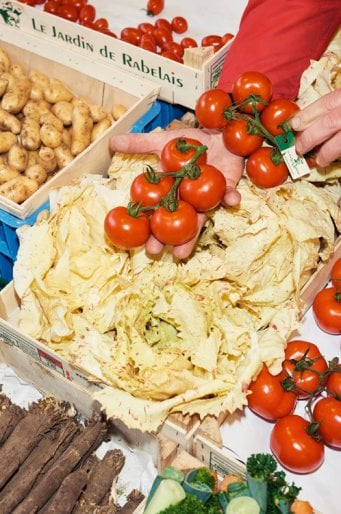 25Container_498x750_Tomate_06